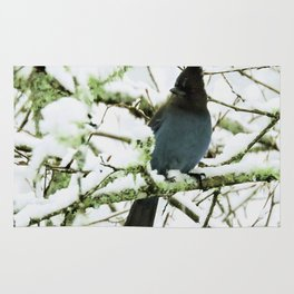 Steller's Jay in the Snow Rug