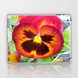Pretty Pansy Laptop & iPad Skin