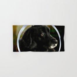 Portrait of a Dog Hand & Bath Towel