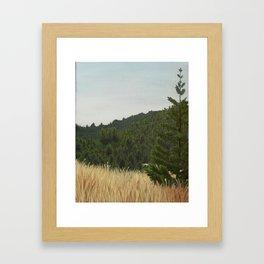 Mt. Tamalpais Framed Art Print