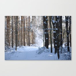 Dropping snow Canvas Print