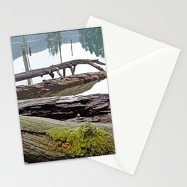 FALLEN TREES ALONG MOUNTAIN LAKE TRAIL Stationery Cards