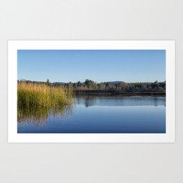 Reflection of reeds in Kunkle reservoir Art Print