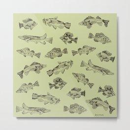 Fish of Lake Como (Green Background Version) Metal Print