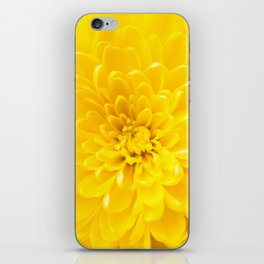 Yellow Dahlia Photography Print iPhone Skin