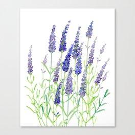Watercolor Lavender Bouquet Canvas Print