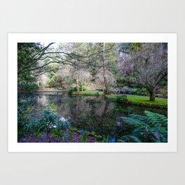 Alfred Nicholas Memorial Gardens, Sherbrooke, Victoria Art Print