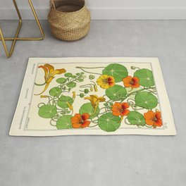 French botanical flower plate - Maurice Verneuil - Capucine Rug