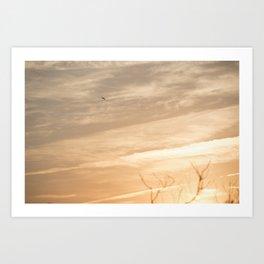 Bird at Sunset Art Print