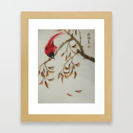 Red Bird Framed Art Print