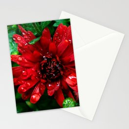 red n green Stationery Cards