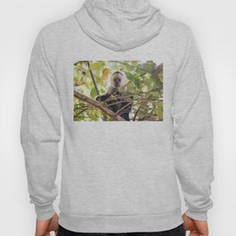 Lick the system Hoody