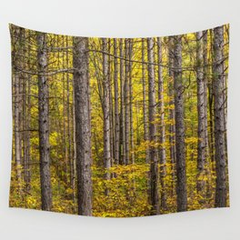 Fall Colors among Pine Trees Wall Tapestry