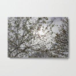Bright Trees Metal Print