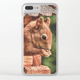 Foraging Squirrel in Little House Clear iPhone Case