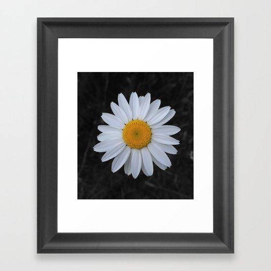 Wild Daisy Framed Art Print