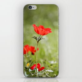 Anemones in the Sun iPhone Skin