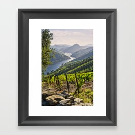 Vineyards along the Douro Valley, Portugal Framed Art Print