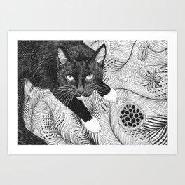 cat in black and white III Art Print