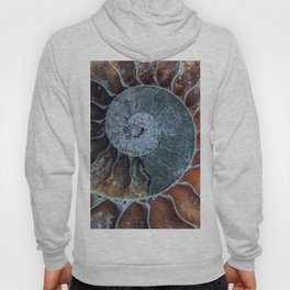 Spiral Ammonite Fossil Hoody