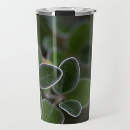 White Edged Sage in the Fall Travel Mug