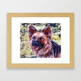 The Shiloh Shepherd Framed Art Print