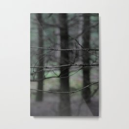 Clawing branches Metal Print