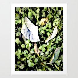 Nature's Changes Art Print