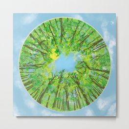 Blue sky and trees in springtime Metal Print