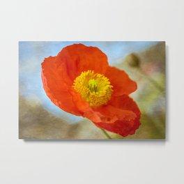 Orange Poppy Flower on a Warm Spring Breeze -- Bright Cheerful Botanical Metal Print