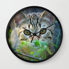 Domestic SHort Hair Cat Peering Through The Bushes Wall Clock