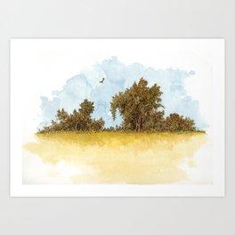 Dry Fields of Clovis Art Print