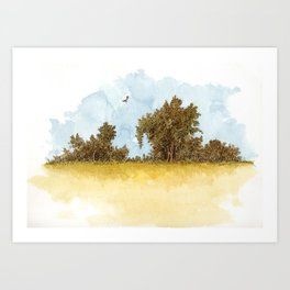 Dry Fields of Clovis Art Print
