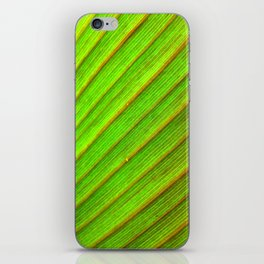 Canna Up iPhone Skin