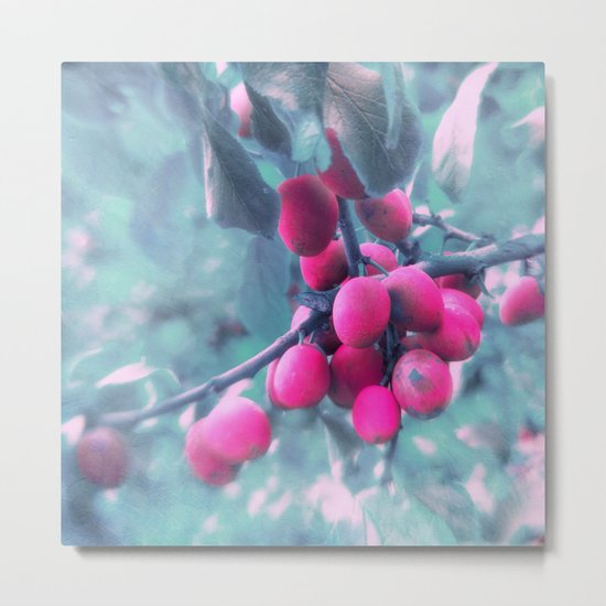 SUMMERPLUMS Metal Print