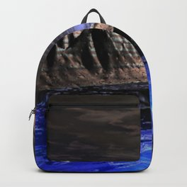 Doversity Backpack
