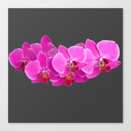 CHARCOAL GREY PURPLE PINK ORCHIDS Canvas Print