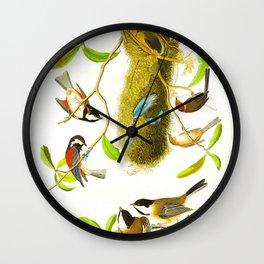 Black Capped Titmouse Wall Clock