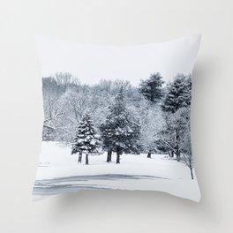 snowy field Throw Pillow