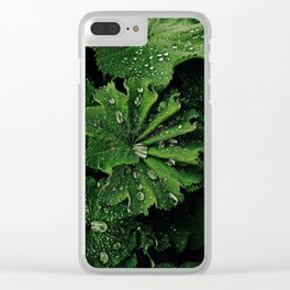 Dew On Rose Scented Geranium Leaves Clear iPhone Case
