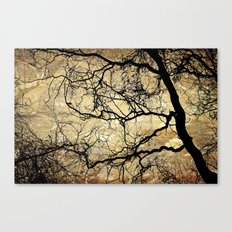 Branches Pattern and Texture Canvas Print
