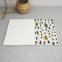 Freshwater Turtles of the United States Rug