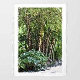 Palm Grove Art Print