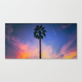 Palm Tree Sky Canvas Print