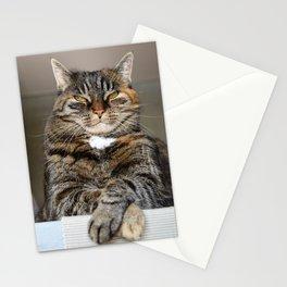 Unimpressed Cat Stationery Cards