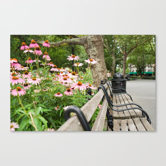 City Bench Flowers Canvas Print