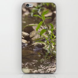 Come Away to the Water. iPhone Skin