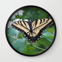 Eastern Tiger Swallowtail Butterfly Wall Clock