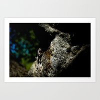 Tree Swirls II Art Print