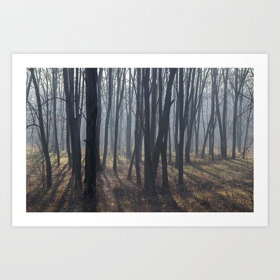 Fog Autumn forest Art Print